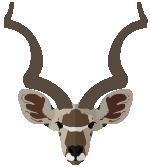kudu_small