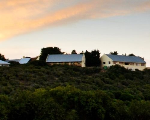 Kududu Guest Farm - Accommodation near Addo Elephant Park
